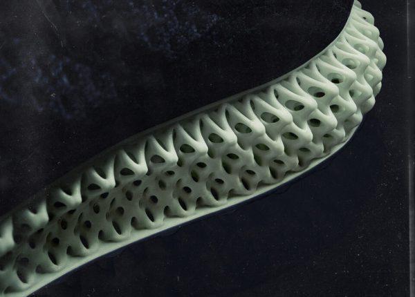 Giày Adidas Futurecraft 4D Print